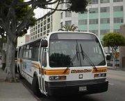 mikrobusy - firma wynajmująca